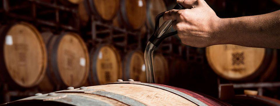 טעימת יין מהחבית
