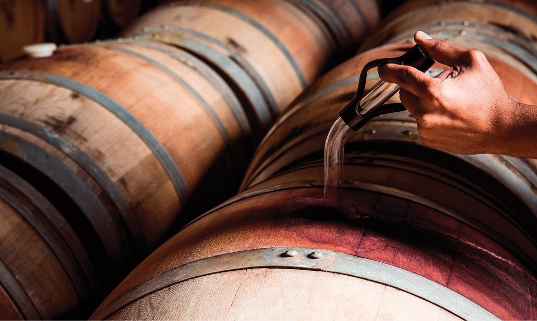 הוצאת יין מהחבית חדר חביות