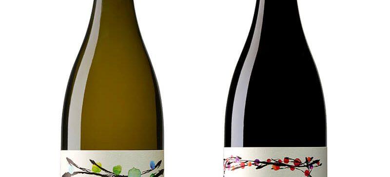 יינות ביתוני ומראווי מסדרת הגפנים הקדומות